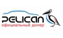 Pelican Motors